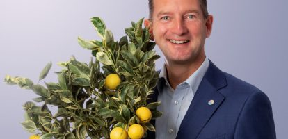 DFG Michel van Hout Dutch Flower Group